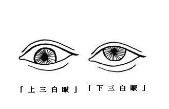 """""""一白眼、二白眼、三白眼、四白眼""""面相的人命运有什么特点?"""